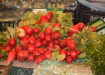 Regionaler Erzeugermarkt in Lagos, Algarve. Auf dem Bild ist ein dicker Bund frischer Radieschen.